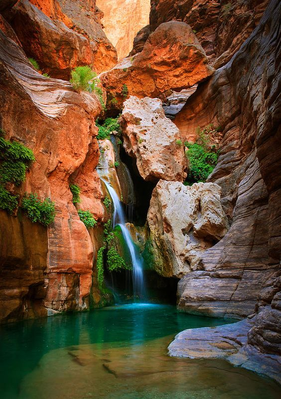 ✯ Elves Chasm waterfall in the interior of the Grand Canyon