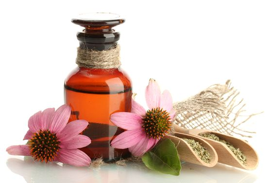 Use echinacea oil for a clear complexion. Found commonly as a flower, the Echinacea herb can be reduced and processed in order to create Echinacea oil, which must be applied on your skin on a regular basis for the best effects. Source: http://hisacne.com/acne-treatments/treat-acne-naturally-with-echinacea-oil/