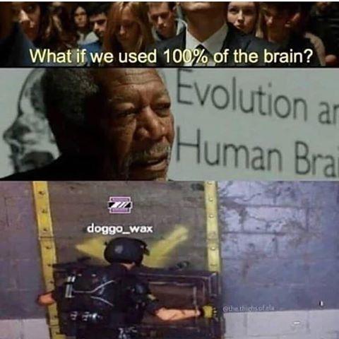 100 Do Cerebro Do Ser Humano Rainbow Six Siege Memes Rainbow 6 Seige Funny Memes