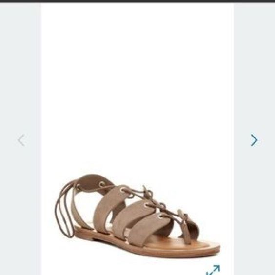 BN Dolce Vita tie up taupe suede sandals 9.5 Brand new, never worn.✅ offers, ❌ trades, 20% off bundles 2+ Dolce Vita Shoes Sandals