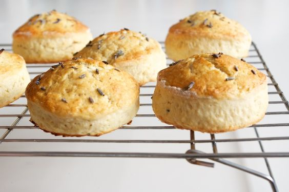 How To Make British Scones - delicate, crumbly, moist and lightly sweet. Great with sweet & savoury toppings.