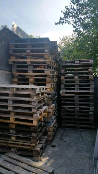 Brennholz gratis