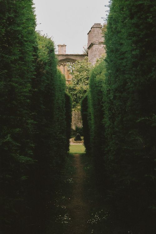 Castillo de Sudeley; jardín.: