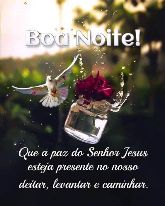 Boa Noite que a paz de Deus esteja presente no nosso deitar!
