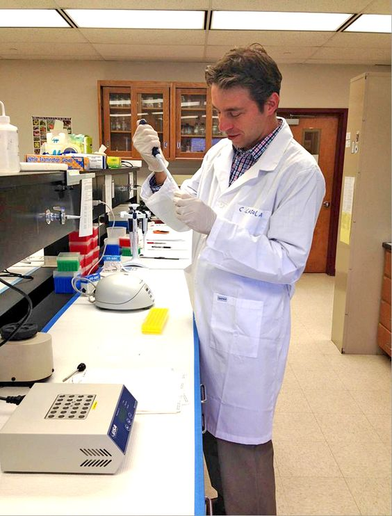 Dr. Claudio Casola, a Texas A&M AgriLife Research forest genomics assistant professor, and his team documented a natural DNA transfer between animals and plants. (Texas A&M AgriLife Communications photo)