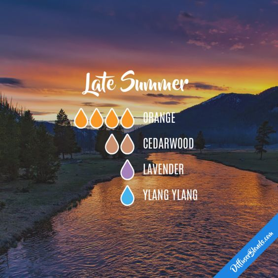 Late Summer - Essential Oil Diffuser Blend