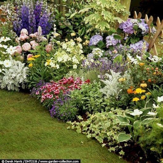 The Best Perennial Plants For Cottage Gardens Hydrangea Landscaping Hosta Gardens Cottage Garden