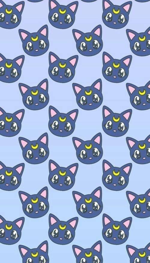 grafika wallpaper, cat, and sailor moon