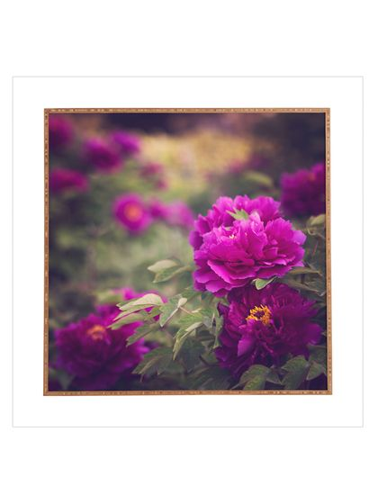 Catherine Mcdonald Peony Garden At Dayan Pagoda Framed Wall Art by DENY Designs at Gilt