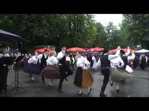 12. Juli 2014   5. Banater Kirchweih  - Saarer Tanzgruppe/Ungarn 2