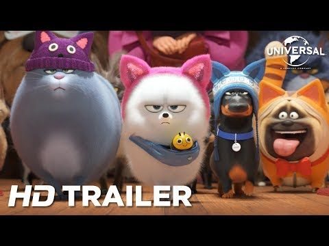Chloe Can T Be Bothered Unless You Ve Got Food The Secret Life Of Pets Now Playing Secret Life Of Pets Secret Life Pets