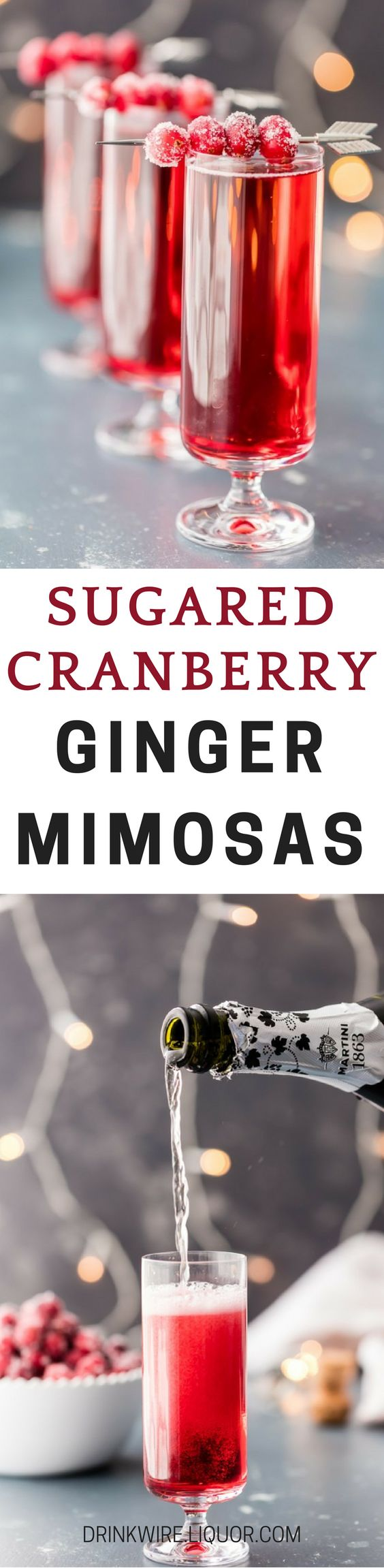 Sugared Cranberry Ginger Mimosas, ONLY THREE INGREDIENTS! Easy holiday cocktail recipe perfect for #Thanksgiving, #Christmas, and Valentine's Day! Because #Mimosas never go out of season!: