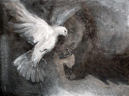dove-raven by donbarnett, via Flickr