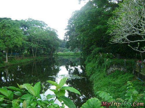 Philippines Places Fishing Place In La Mesa Eco Park Lagoon La Mesa Eco Park Quezon City