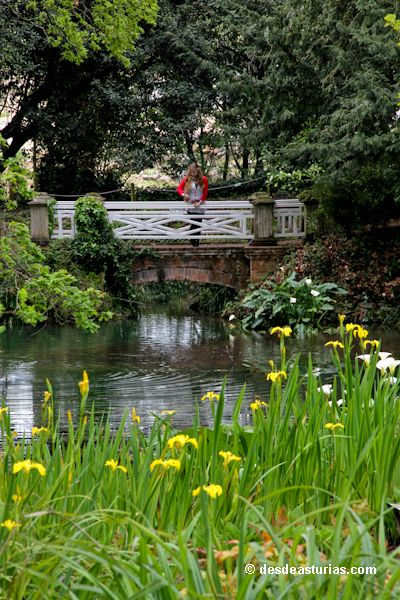Jardín Botánico de #Gijón Qué ver en Gijón [Más info] http://www.desdeasturias.com/jardin-botanico-de-gijon/