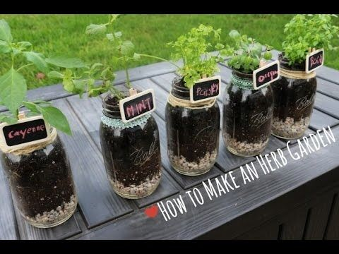 Look how easy is to make an indoor garden. #permaculture #gardening #diy #video