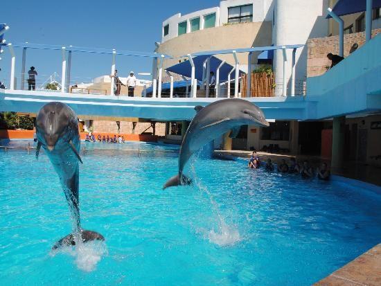 fotos lorenzillos cancun - Buscar con Google