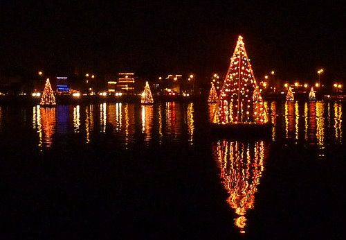 A Christmastime tradition in Long Beach, CA, Trees in the Bay ...