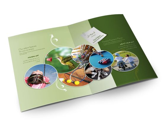Fresh Produce Gate Fold Brochure  Design Inspiration