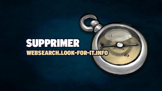 Supprimer websearch.look-for-it.info - https://www.comment-supprimer.com/websearch-look-for-it-info/