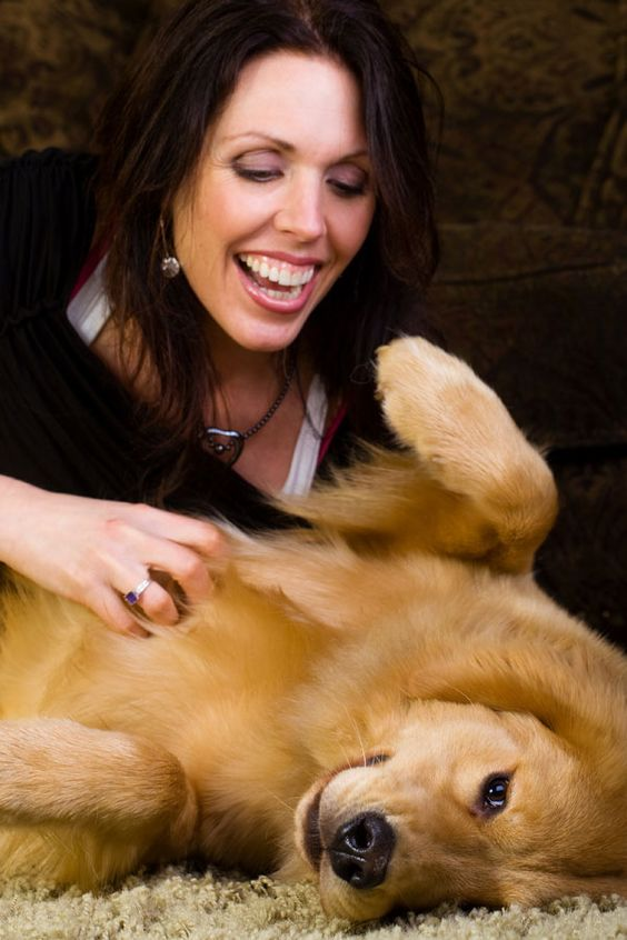 """Dogs prefer petting to praise such as """"Good girl!"""""""