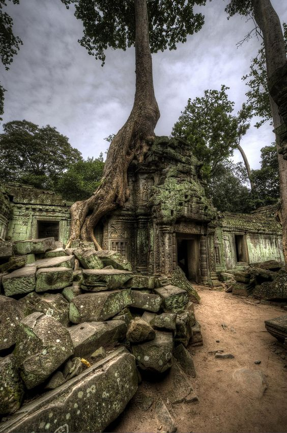 Tree taking over ruins of building inside Ta Prohm temple complex, Angkor Wat, Cambodia. by Jon Sheer