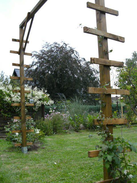Rosenbogen aus Kunststoff - Seite 2 - Gartenpraxis - Mein schöner Garten online