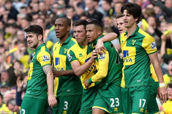Norwich City 3-2 Newcastle United:Martin Olsson grabs dramatic late winner to pile more misery on Rafa Benitez and hand Alex Neil's side the advantage in the battle for survival