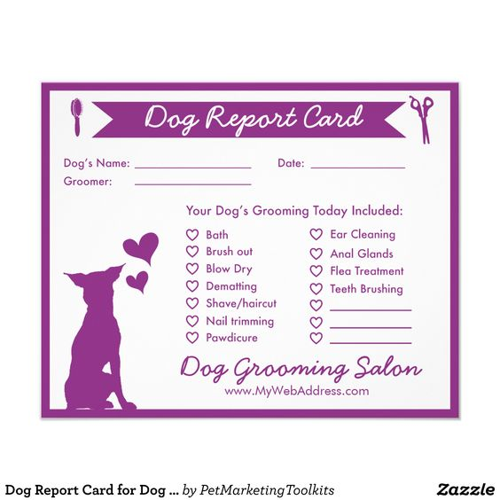 dog report card for dog groomers 4 5 x 5 6 flyer