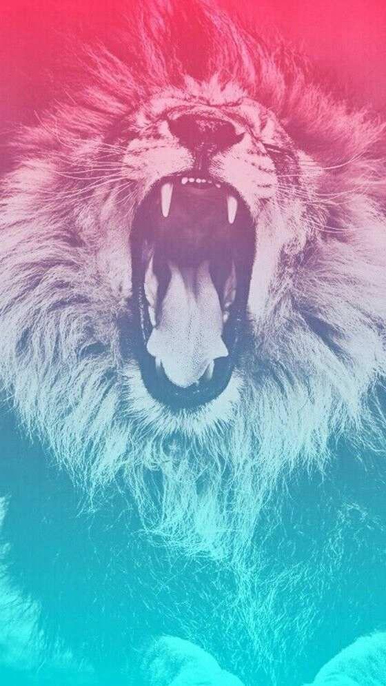 Lion Roar Wallpaper Art Urbain Animation Animaux Fond Ecran Hd