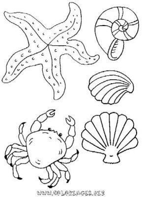 Coloriages gratuits - Mer_et_poissons coloriage mer 18