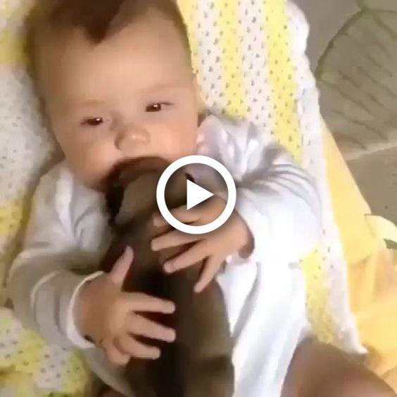 Bebê e cãozinho se tornam  grandes amigos