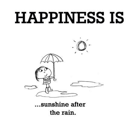 Happiness is sunshine after the rain.: