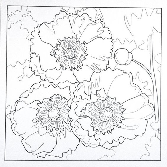 Luxury Poppy Coloring Pages 51 poppies coloring page poppy