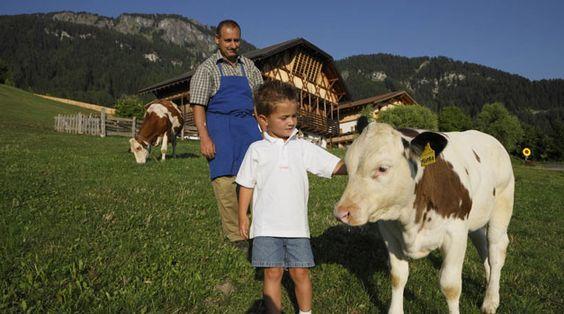 Roter Hahn is gespecialiseerd in boerderijvakanties in Zuid-Tirol, Italië. Alle 1.600 locaties zijn werkende boerderijen. Elk heeft zijn eigen specialiteit. Sommige zijn vooral gericht op vee en andere dieren, maar er zijn ook fruitteelt boerderijen of wijnboeren met prachtige wijngaarden op de hellingen van de zuidelijke Alpen. Je hebt alle mogelijkheden om met het leven op de boerderij kennis te maken en om de heerlijke zelfgemaakte producten te proeven