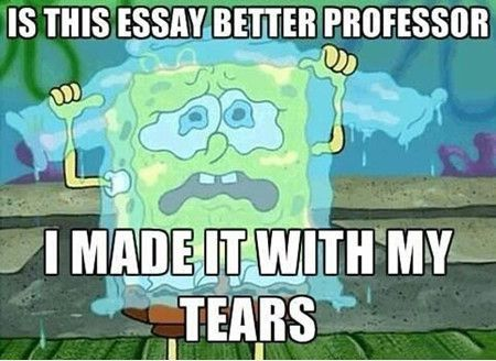 What should i write my laws of life essay about?