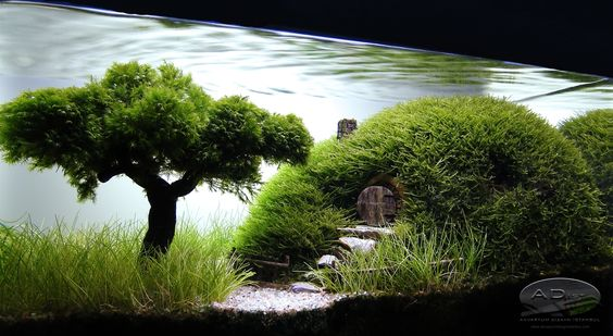 "Aquascaping | Our Preciousss..."" by ADist 