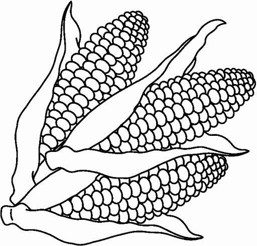 28 Corn On The Cob Coloring Page In 2020 Free Coloring Pages