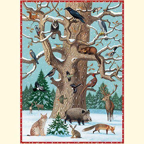 Tiere im Winter (Adventskalender) von Thomas Müller…