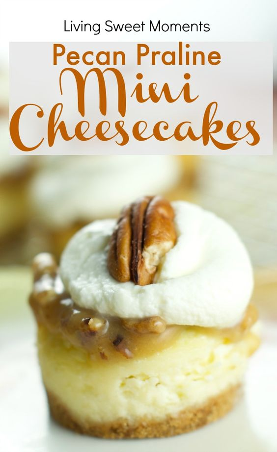 Pecan pralines, Mini cheesecakes and Best cheesecake on Pinterest