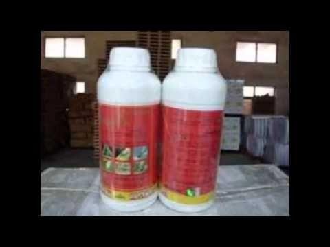 ▶ شركة رش مبيدات بالرياض 0555260167 شركة الافضل - YouTube