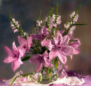 rózsaszín virágok: