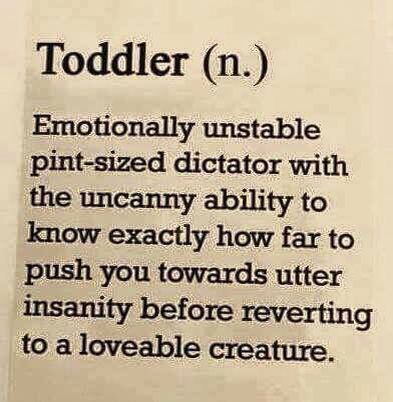 Toddler - parenting humor {pacifickid.net/}