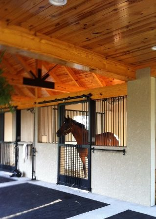 The white style and vaulted ceilings on pinterest for Horse barn styles