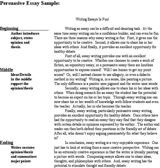 Pin On Teaching Language Arts Argument Essay Examples Example