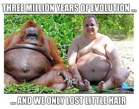 Evolution, they said…