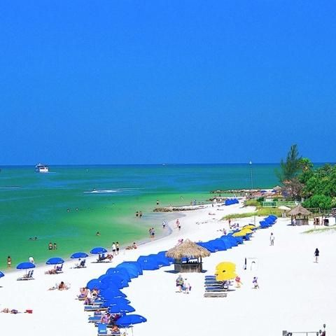 Pier 60 At Clearwater Beach Visit St Petersburg Clearwater Florida Clearwater Beach Florida Best Beach In Florida Florida Vacation