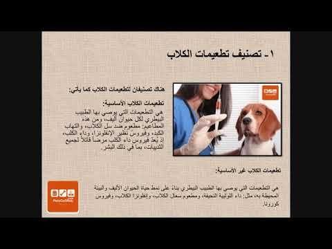 بيتس جوت ويب لشراء وبيع الحيوانات الأليفة تقدم لكم معلومات عن تطعيمات ال Magazine Rack Decor Home Decor