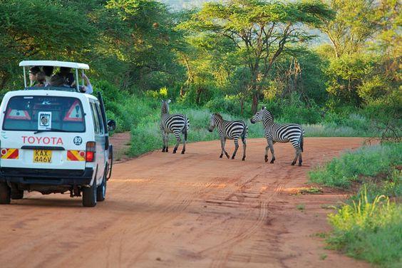 Destino de luna de miel: Kenia e Islas Seychelles