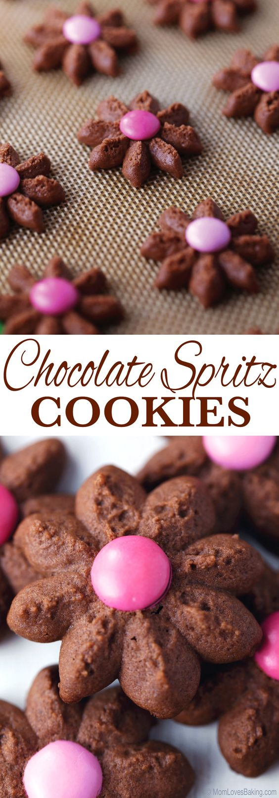 Chocolate Spritz Cookies - buttery, chocolatey and delicious. Easy to make with a cookie press and perfect for a ladies tea or birthday party. Find the recipe on MomLovesBaking.com